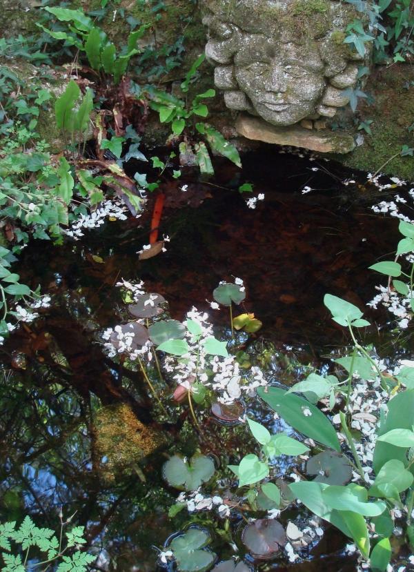 Jardins de Cadiot - Carlux