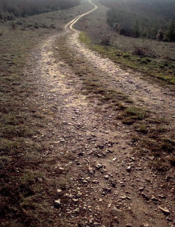 Chemin du causse