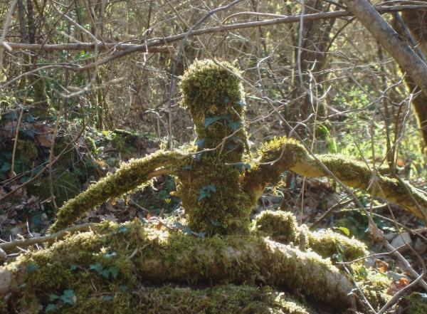 Yogi des bois