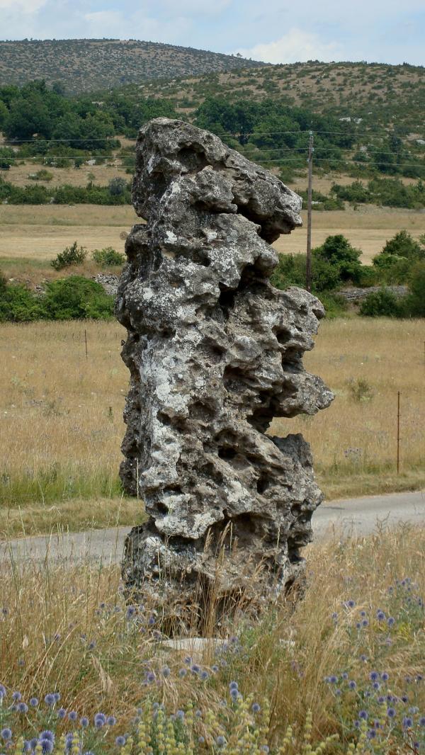 Mégalithe - Causse de Blandas