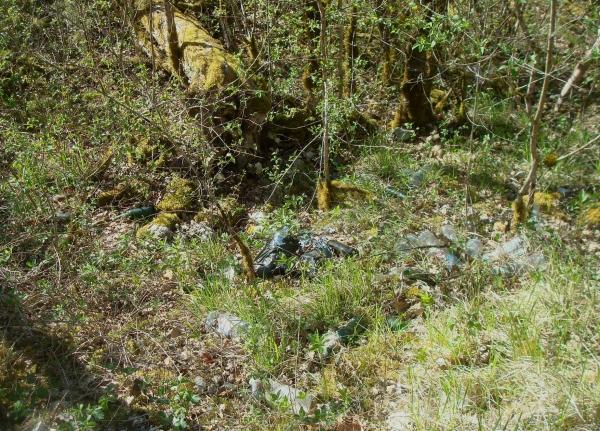 Abandon de bouteilles aux alentours de Cremps