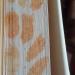 Traces de cocons de guêpes maçonnes sur la tranche d'Anima de Wajdi Mouawad