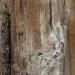 Vieille porte dans la cour du Grenier du châpitre à Cahors