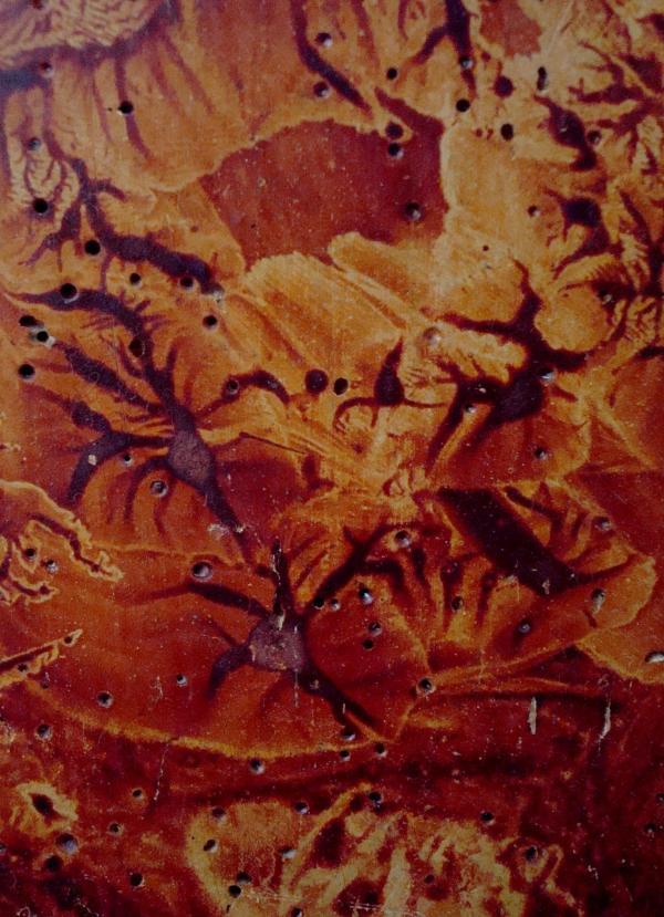 Vernis sur panneau de bois dans ancienne abbaye
