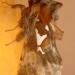 Hépiale du houblon, Louvette
