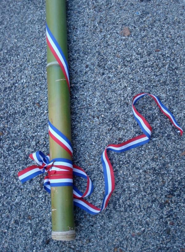 Bambou patriotique