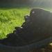 Les chaussures poussent bien cette année