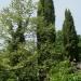 Les Jardins de Cadiot - Carlux