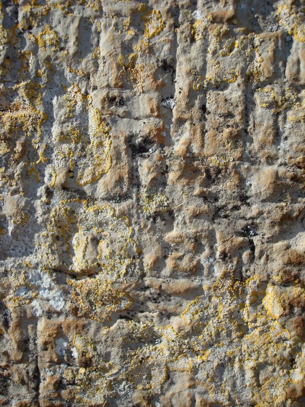 Détail mur extérieur de Notre Dame de Livron