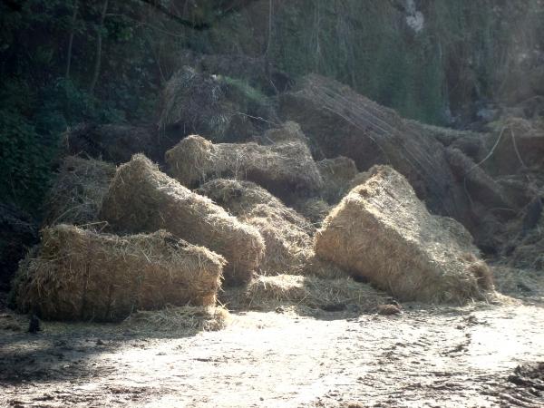 Ruines agricoles