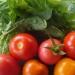 Premières tomates à déguster, trois couleurs