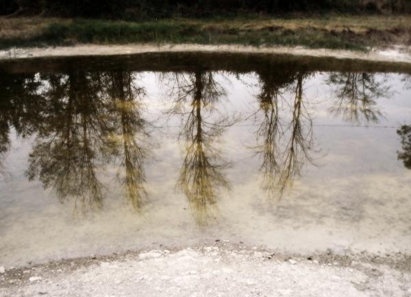 Un lac de St Namphaise sur le causse