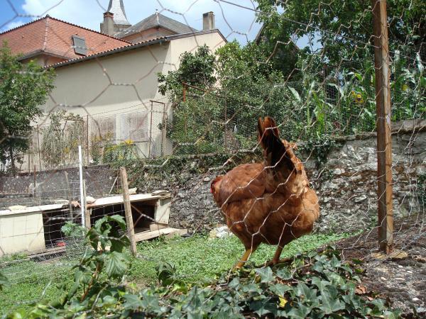 Mayrinhac-Lentour, bonjour !