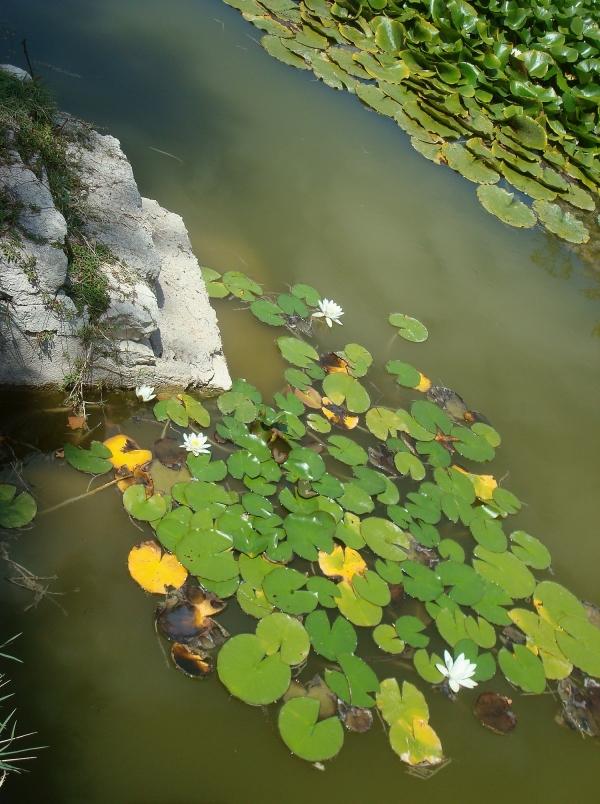Lac Audry - Lugagnac