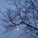 En route vers le pleine lune