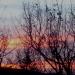 Crépuscule du 25 janvier 2016
