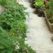 Le jardin suspendu, saison 10