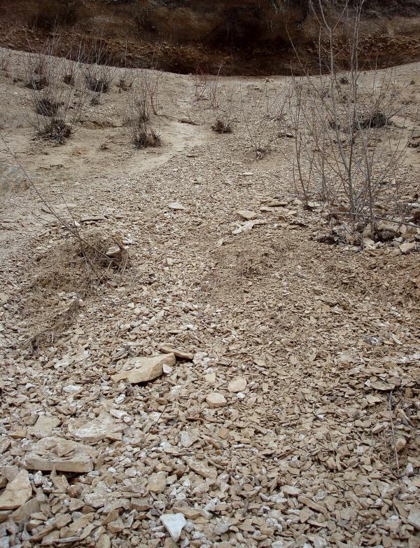 Terre et caillasse