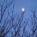 Lune de décembre