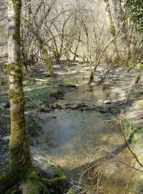 Ruisseau de Lalbrade