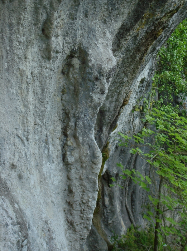 Pause calcaire