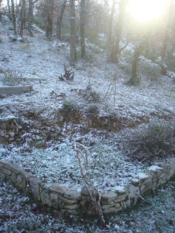 Bonjour hiver !