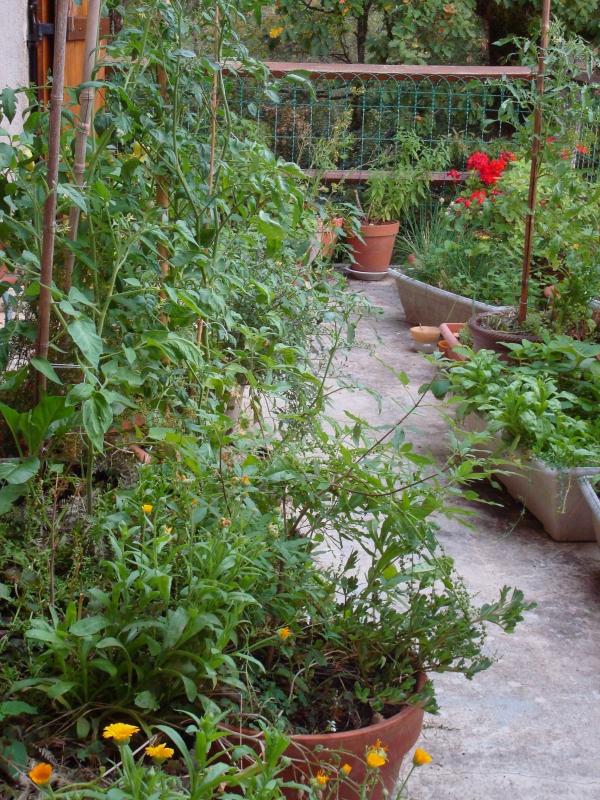 Mes jardins suspendus