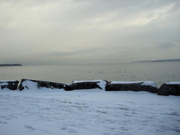Lac Léman - Suisse