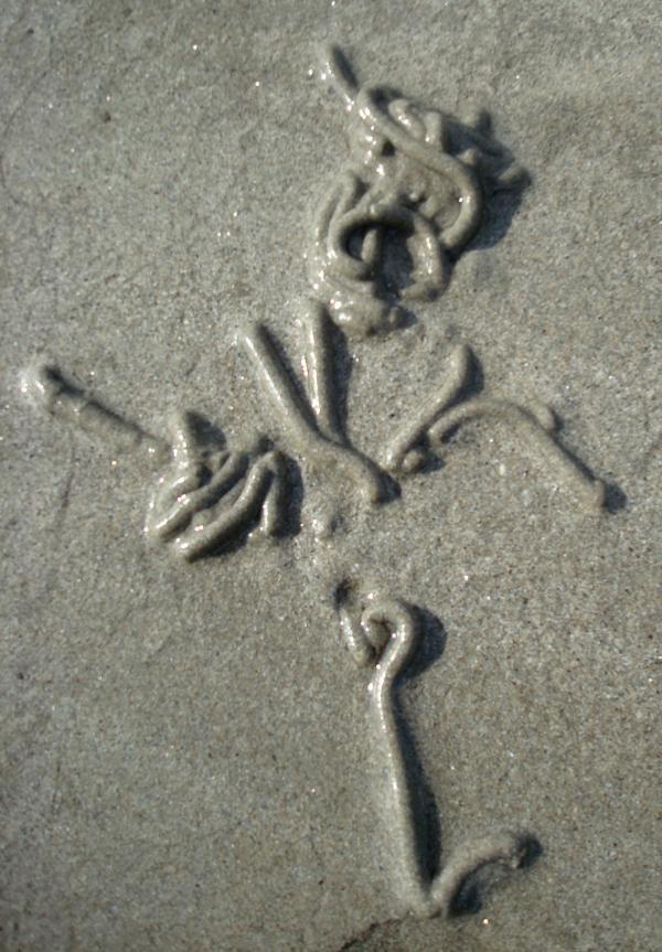 Art des vers de sable