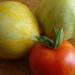 Première tomate ! - 21 juillet