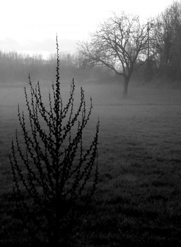 Un hiver dans la vallée