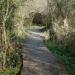 Marais de Bonnefont