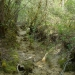 La Sagne joue à cache-cache