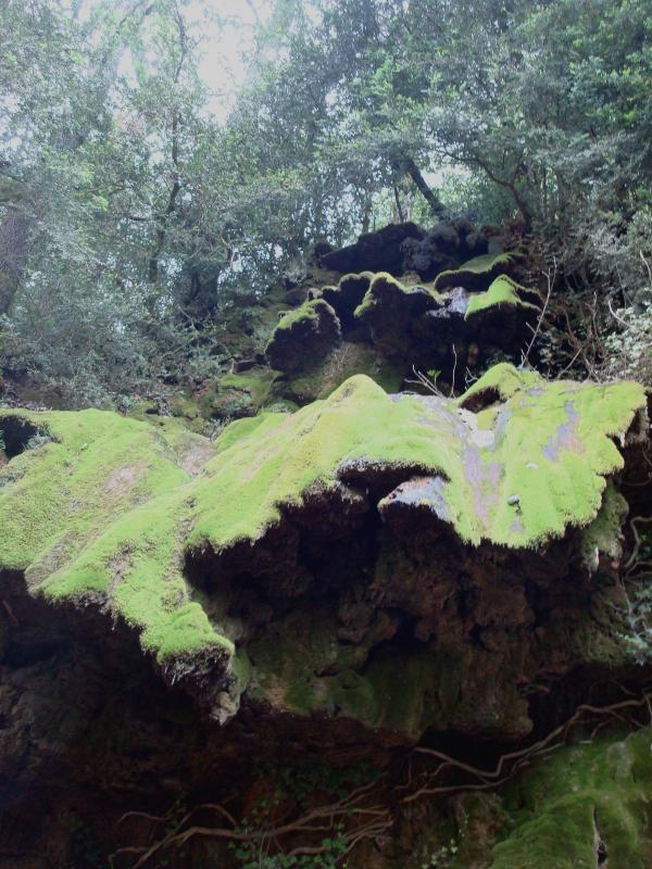 Cascade de la vallée du Bonnan