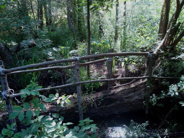 Petit pont de bois sur le ruisseau de Bonnefont