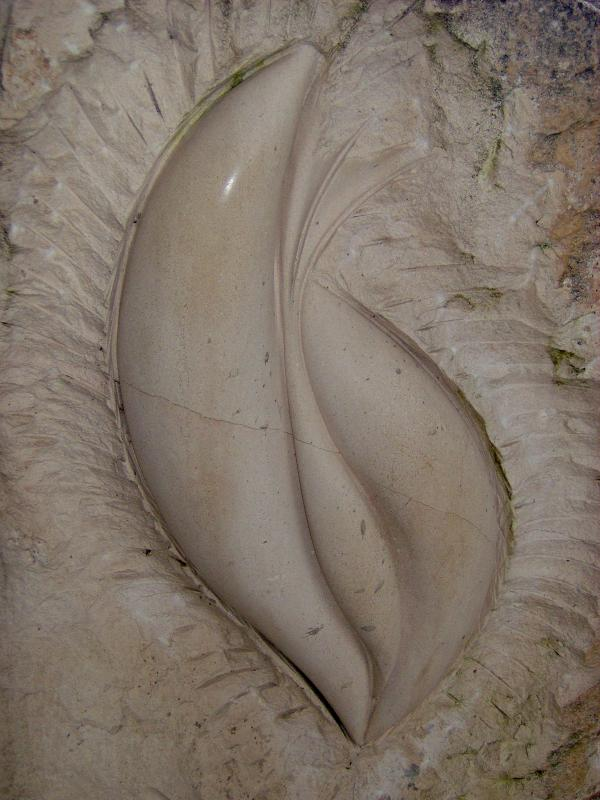 Carennac - oeuvre collective de 5 sculpteurs (détail)