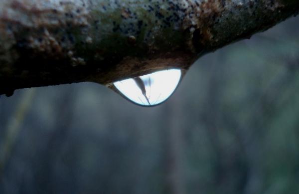 L'eau te regarde