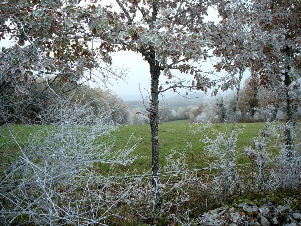 Un printemps en hiver