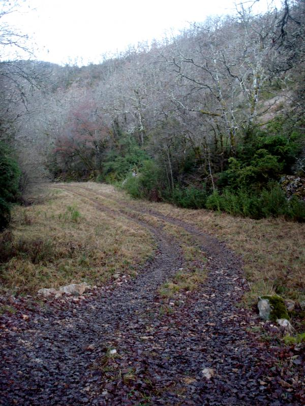 Chemin des Lascombes
