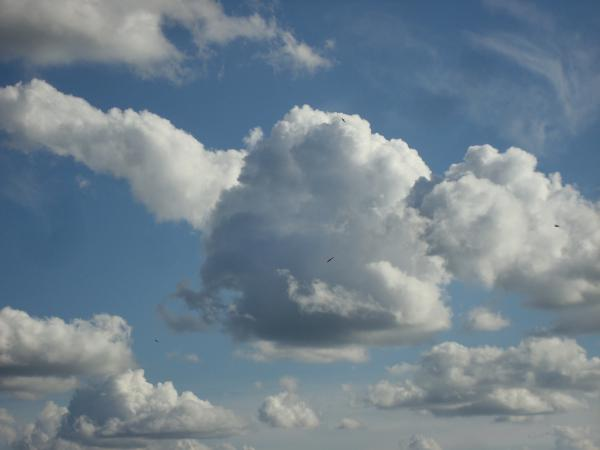 Ciel de nuages et d'hirondelles II