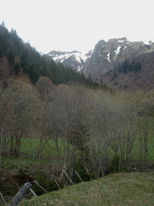 Vallée de Chaudefour - Auvergne