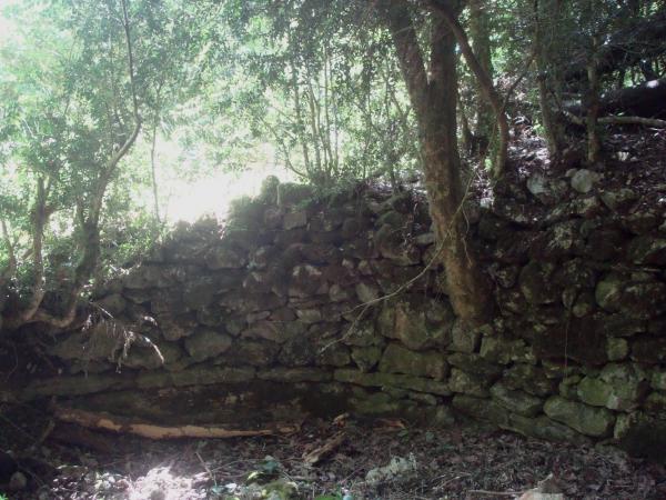 Source oubliée entre causse et vallée du Vers