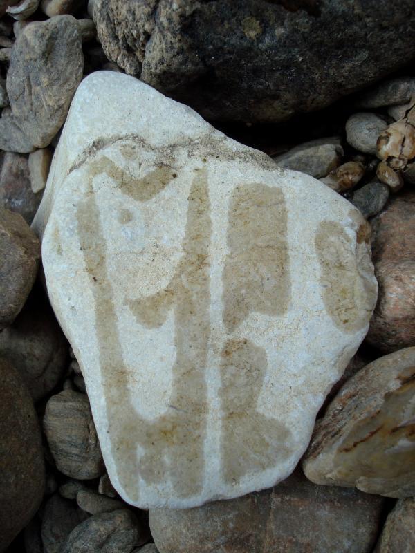 Aquaglyphes