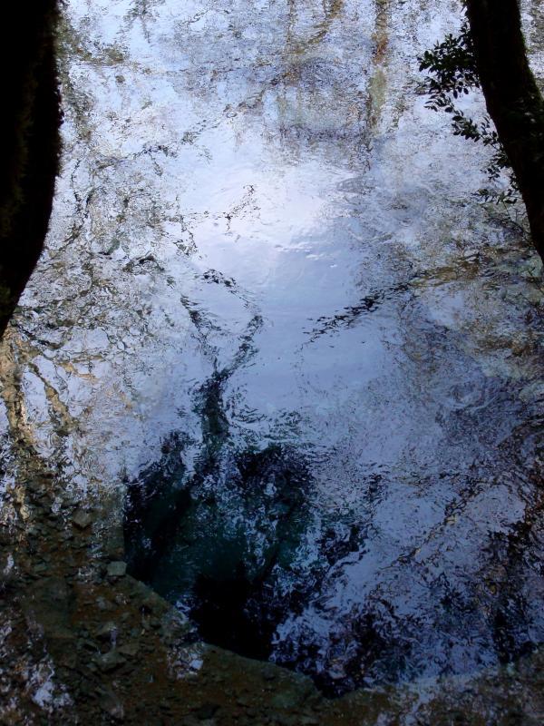Source près du Mas de Merlin
